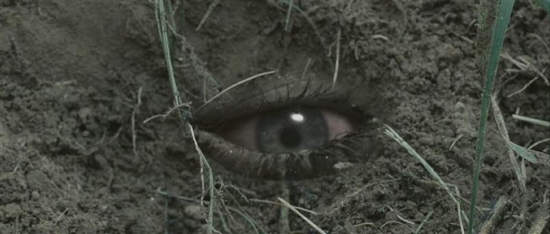 скачать закопанные торрент - фото 6