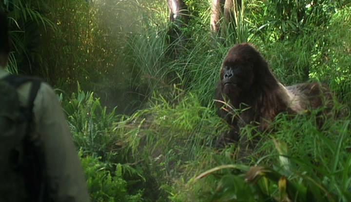 Конго Фильм 1995 Скачать Торрент - фото 8