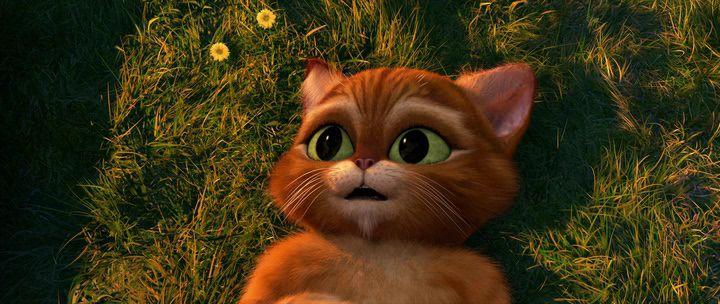 Скачать мультфильм кот в сапогах